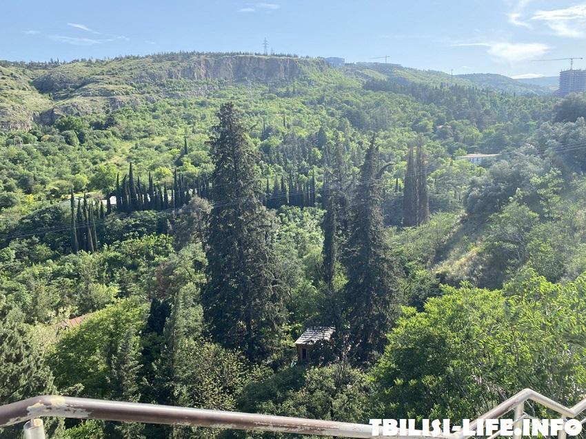Ботсад Тбилиси