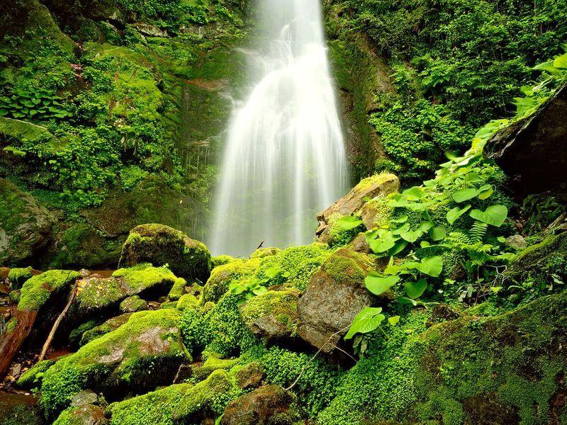 Водопады в Аджарии