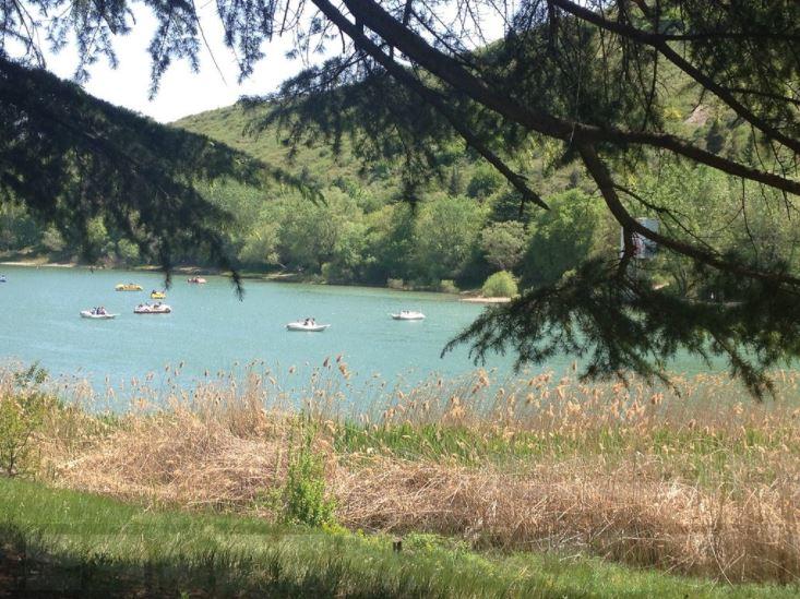 Черепашье озеро на Мтацминде